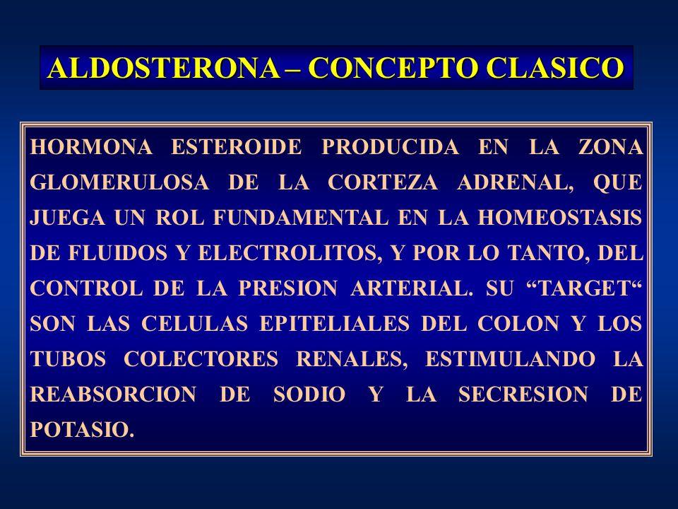 ALDOSTERONA – CONCEPTO CLASICO HORMONA ESTEROIDE PRODUCIDA EN LA ZONA GLOMERULOSA DE LA CORTEZA ADRENAL, QUE JUEGA UN ROL FUNDAMENTAL EN LA HOMEOSTASI