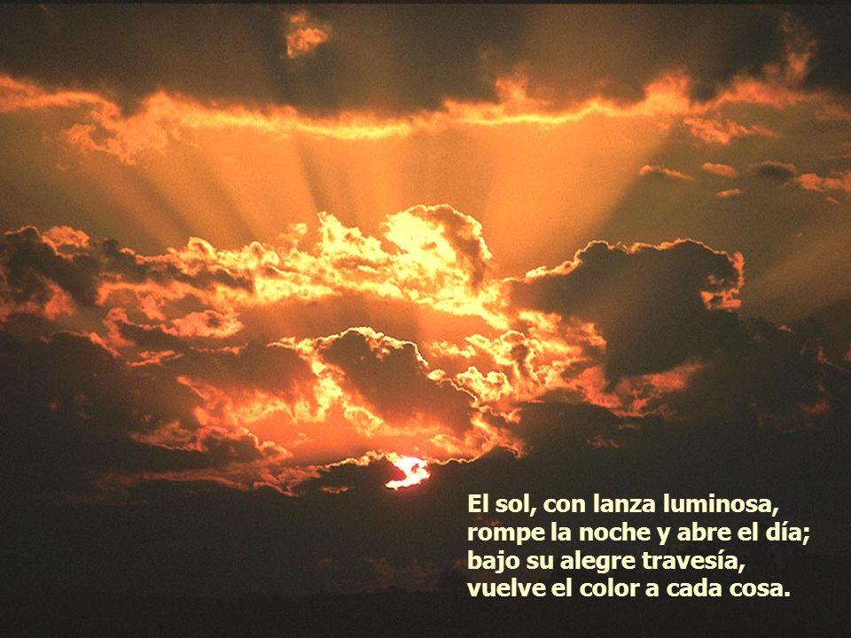 La noche, el caos, el terror, cuanto a las sombras pertenece siente que el alba de oro crece y anda ya próximo el Señor.