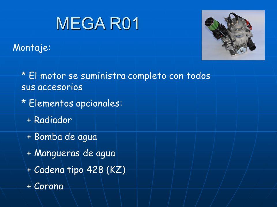 * El motor se suministra completo con todos sus accesorios * Elementos opcionales: + Radiador + Bomba de agua + Mangueras de agua + Cadena tipo 428 (KZ) + Corona Montaje:
