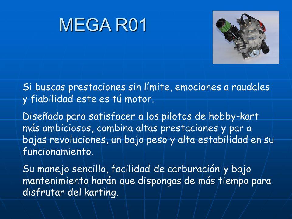 MEGA R01 Si buscas prestaciones sin límite, emociones a raudales y fiabilidad este es tú motor.