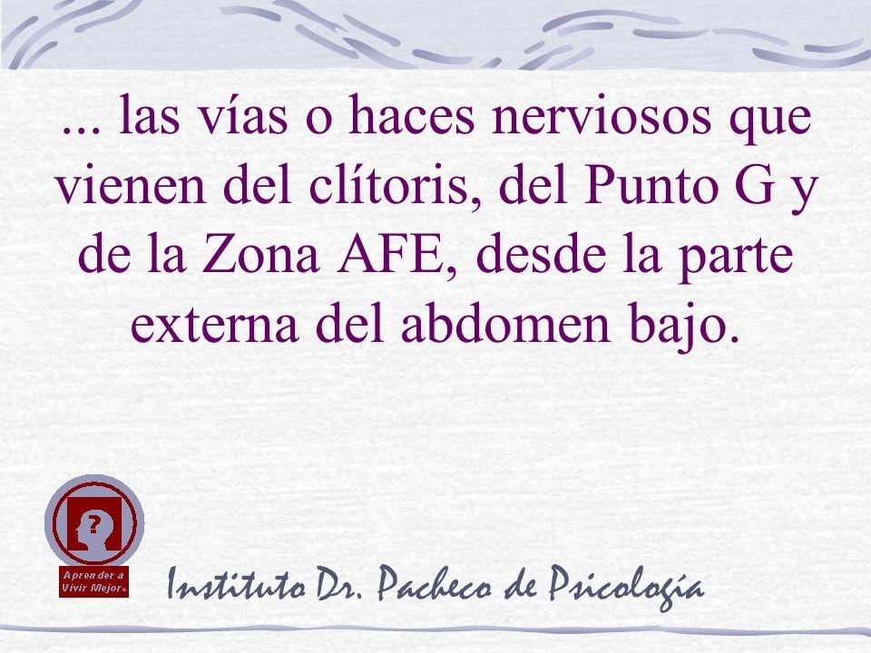 Instituto Dr. Pacheco de Psicología... las vías o haces nerviosos que vienen del clítoris, del Punto G y de la Zona AFE, desde la parte externa del ab