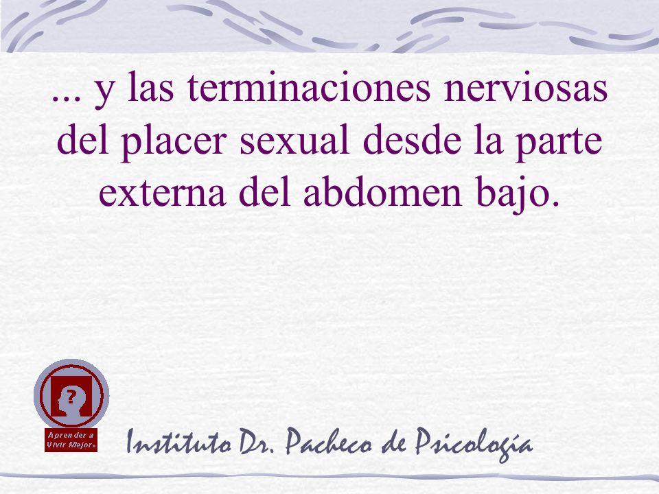 Instituto Dr. Pacheco de Psicología... y las terminaciones nerviosas del placer sexual desde la parte externa del abdomen bajo.