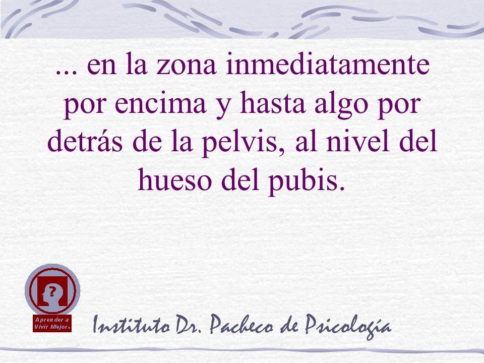 Instituto Dr. Pacheco de Psicología... en la zona inmediatamente por encima y hasta algo por detrás de la pelvis, al nivel del hueso del pubis.