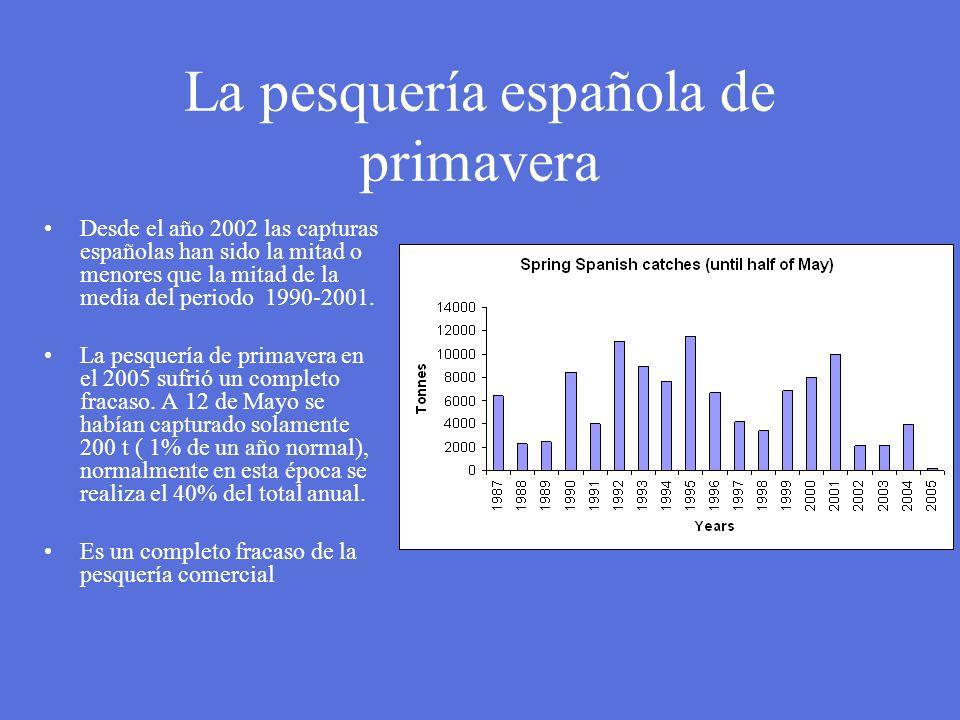 La pesquería española de primavera Desde el año 2002 las capturas españolas han sido la mitad o menores que la mitad de la media del periodo 1990-2001