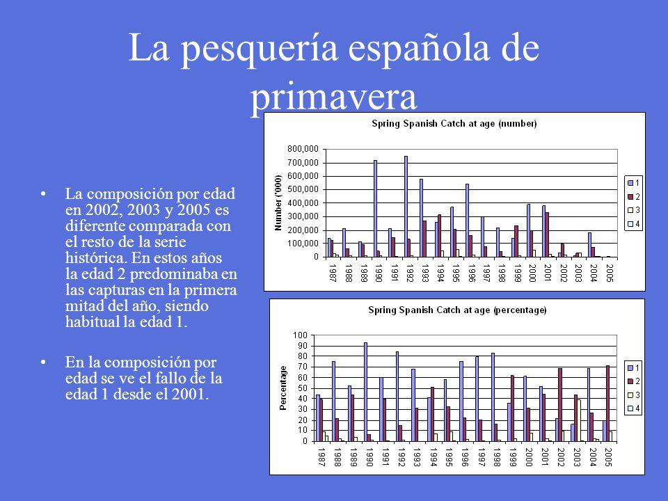 La pesquería española de primavera La composición por edad en 2002, 2003 y 2005 es diferente comparada con el resto de la serie histórica. En estos añ