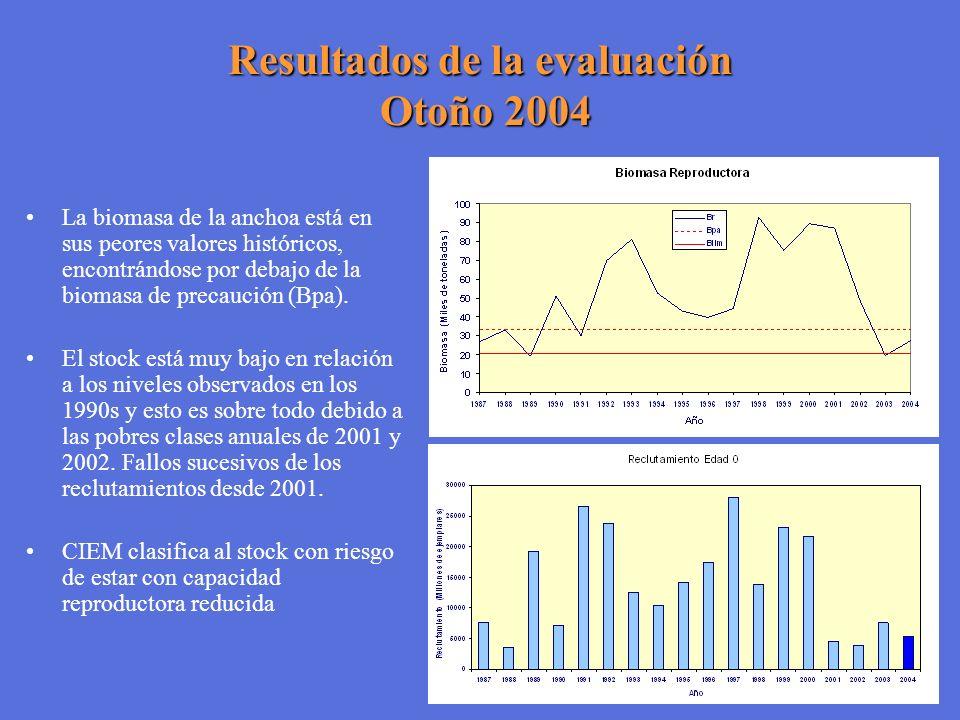 Resultados de la evaluación Otoño 2004 La biomasa de la anchoa está en sus peores valores históricos, encontrándose por debajo de la biomasa de precau