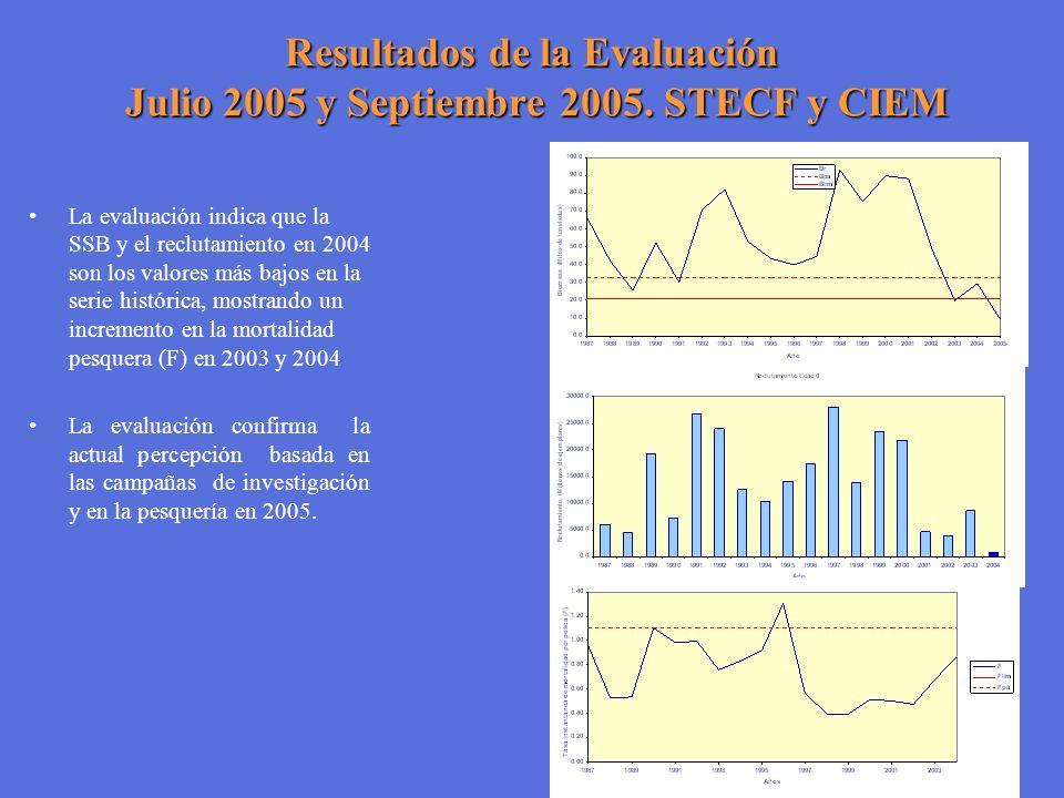 Resultados de la Evaluación Julio 2005 y Septiembre 2005. STECF y CIEM La evaluación indica que la SSB y el reclutamiento en 2004 son los valores más