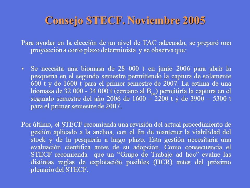 Consejo STECF. Noviembre 2005 Para ayudar en la elección de un nivel de TAC adecuado, se preparó una proyección a corto plazo determinista y se observ