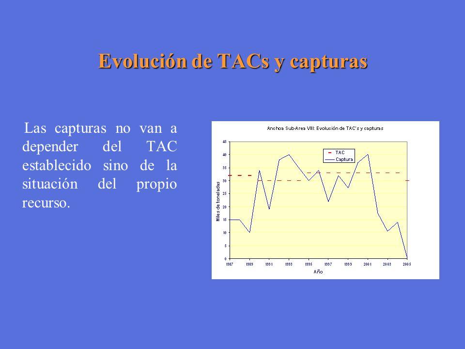 Evolución de TACs y capturas Las capturas no van a depender del TAC establecido sino de la situación del propio recurso.