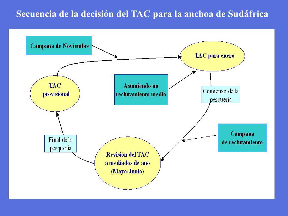Secuencia de la decisión del TAC para la anchoa de Sudáfrica