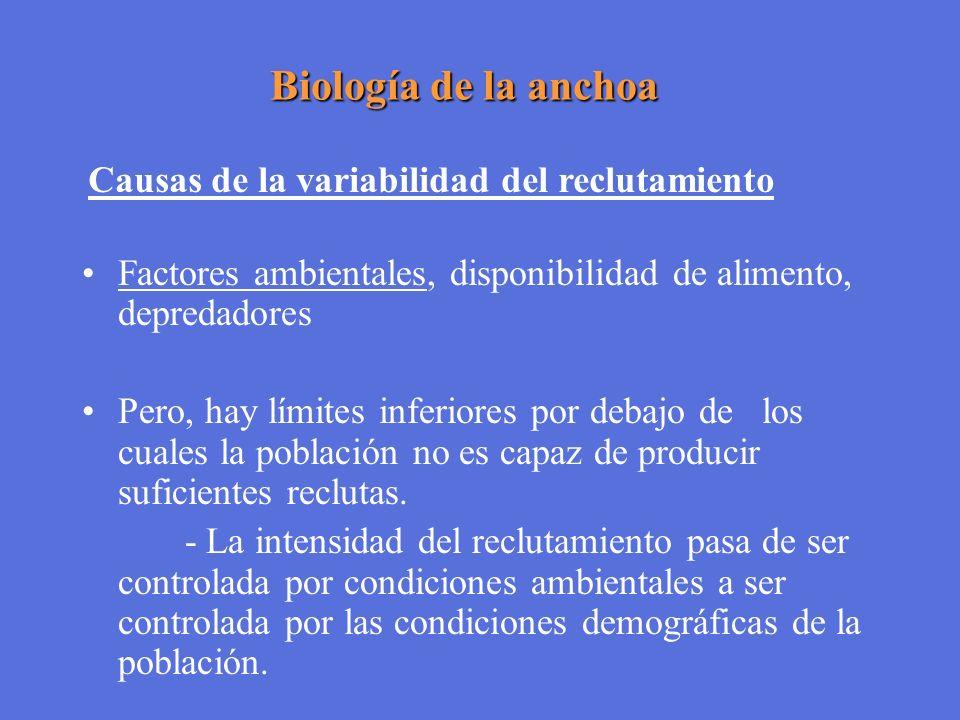 Biología de la anchoa Factores ambientales, disponibilidad de alimento, depredadores Pero, hay límites inferiores por debajo de los cuales la població