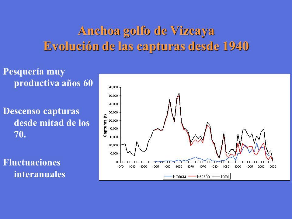 Anchoa golfo de Vizcaya Evolución de las capturas desde 1940 Pesquería muy productiva años 60 Descenso capturas desde mitad de los 70. Fluctuaciones i