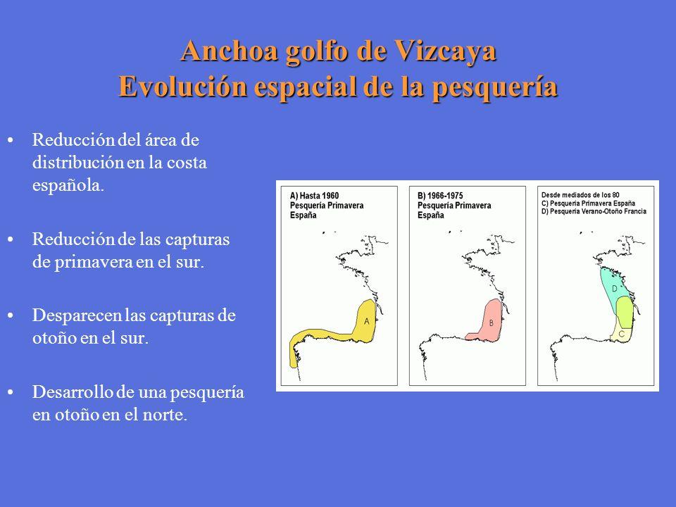 Anchoa golfo de Vizcaya Evolución espacial de la pesquería Reducción del área de distribución en la costa española. Reducción de las capturas de prima