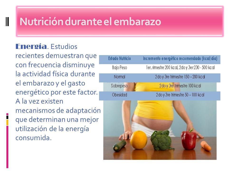 Energía. Estudios recientes demuestran que con frecuencia disminuye la actividad física durante el embarazo y el gasto energético por este factor. A l