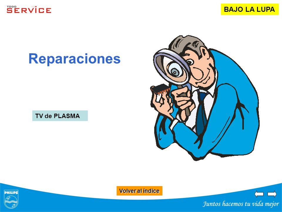 Volver al índice Volver al índice Reparaciones BAJO LA LUPA TV de PLASMA
