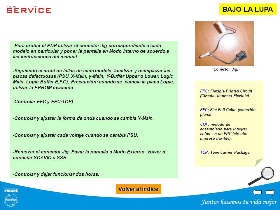 Volver al índice Volver al índice BAJO LA LUPA -Para probar el PDP utilizar el conector Jig correspondiente a cada modelo en particular y poner la pan