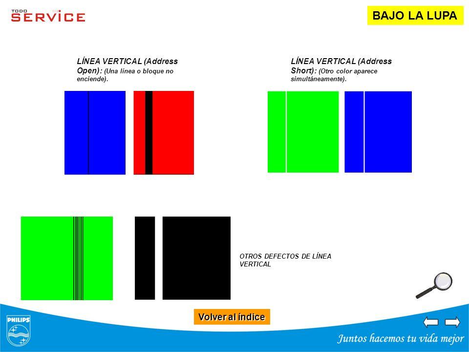 Volver al índice Volver al índice BAJO LA LUPA LÍNEA VERTICAL (Address Open): (Una línea o bloque no enciende). LÍNEA VERTICAL (Address Short): (Otro
