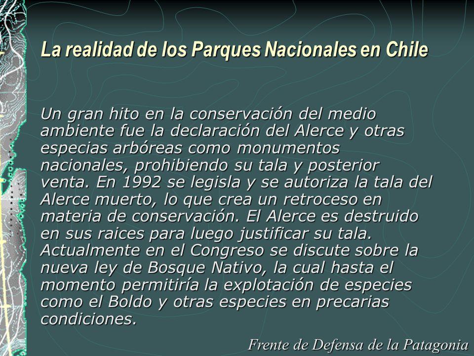 La realidad de los Parques Nacionales en Chile Un gran hito en la conservación del medio ambiente fue la declaración del Alerce y otras especias arbóreas como monumentos nacionales, prohibiendo su tala y posterior venta.