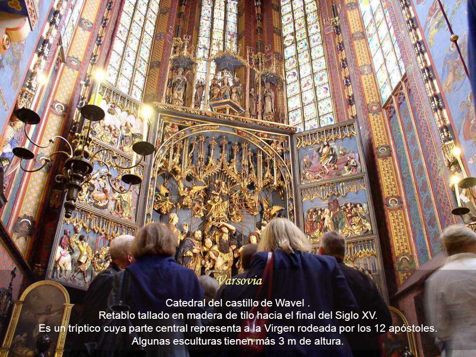 Varsovia Catedral del castillo de Wavel.