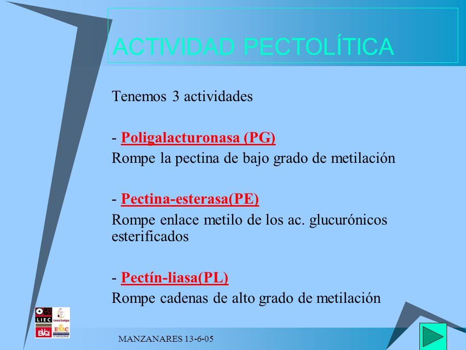 MANZANARES 13-6-05 ACTIVIDAD PECTOLÍTICA Tenemos 3 actividades - Poligalacturonasa (PG) Rompe la pectina de bajo grado de metilación - Pectina-esteras