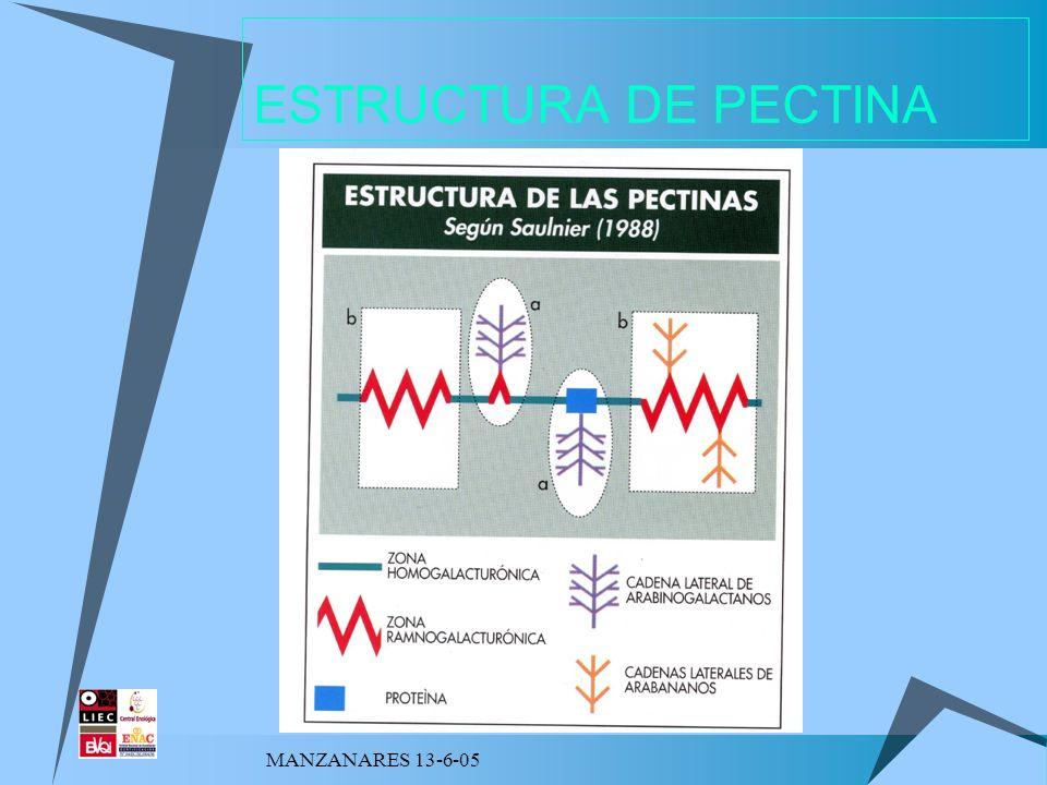 MANZANARES 13-6-05 ESTRUCTURA DE PECTINA