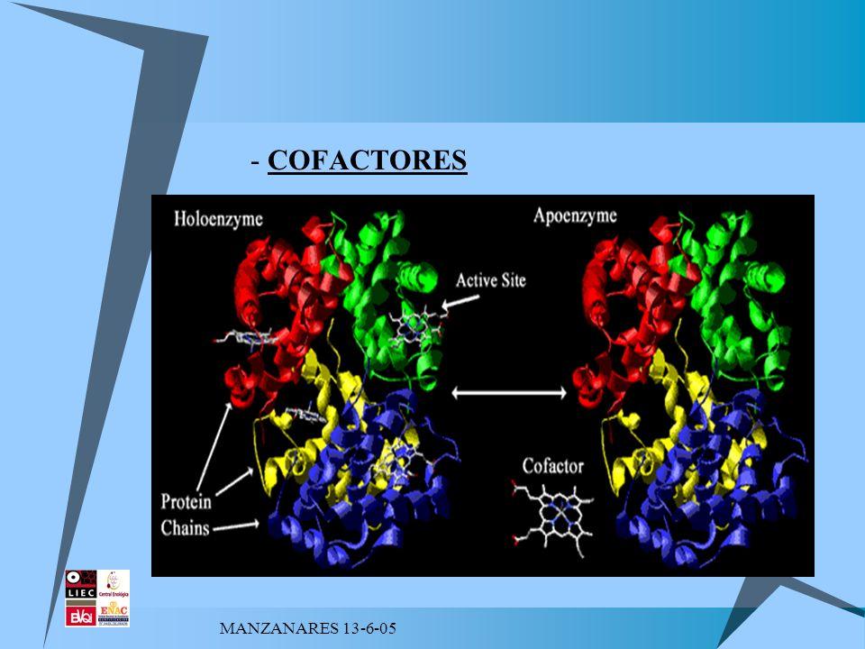 MANZANARES 13-6-05 PROCEDENCIA DE LAS ENZIMAS - En las células vivas.