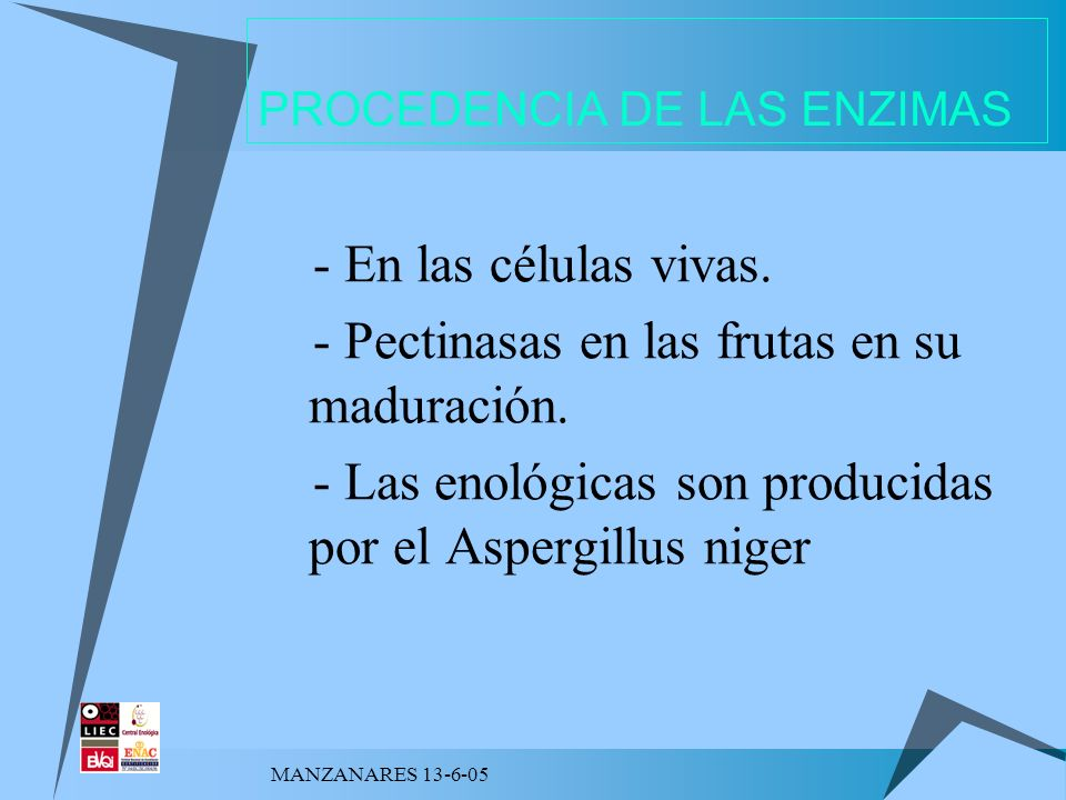 MANZANARES 13-6-05 PROCEDENCIA DE LAS ENZIMAS - En las células vivas. - Pectinasas en las frutas en su maduración. - Las enológicas son producidas por