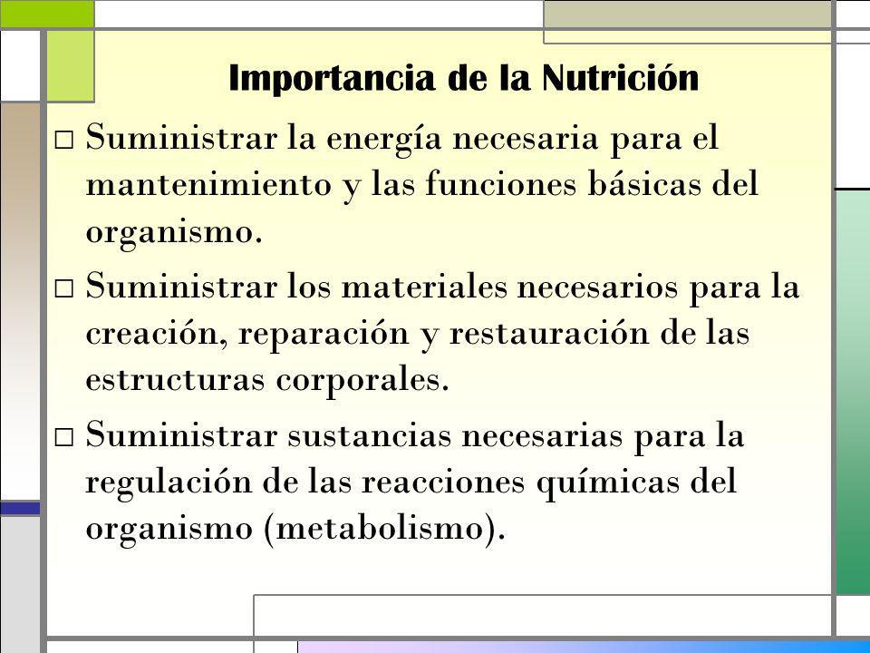 Suministrar la energía necesaria para el mantenimiento y las funciones básicas del organismo.