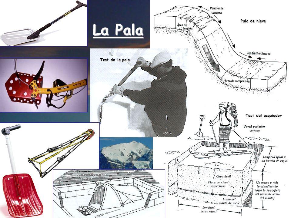 La Pala Test de la pala Test del esquiador Pala de nieve
