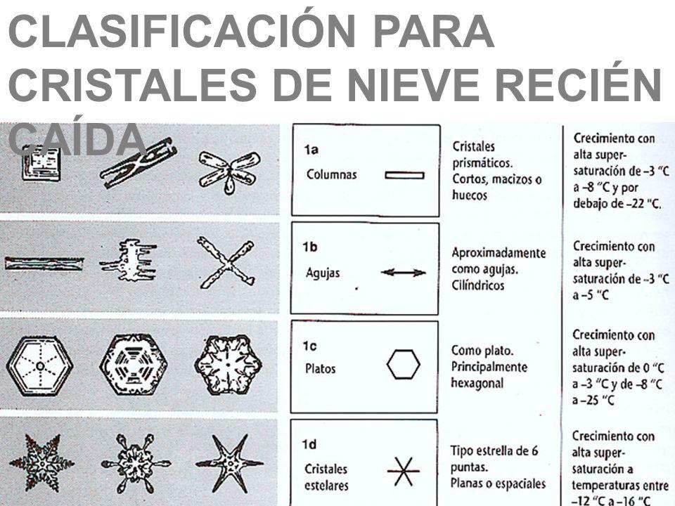 CLASIFICACIÓN PARA CRISTALES DE NIEVE RECIÉN CAÍDA