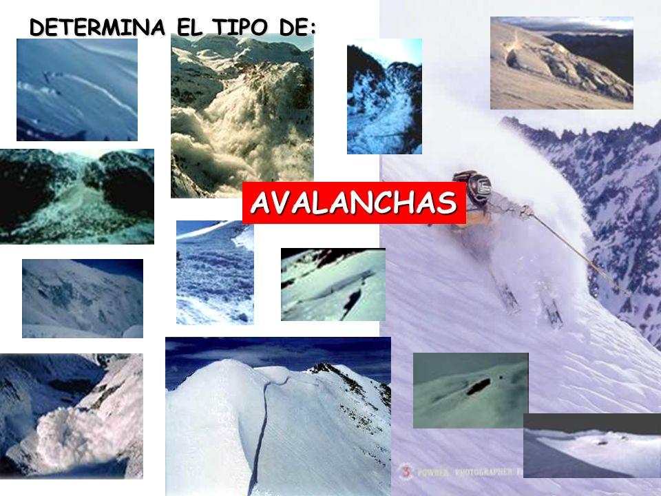 AVALANCHAS DETERMINA EL TIPO DE: