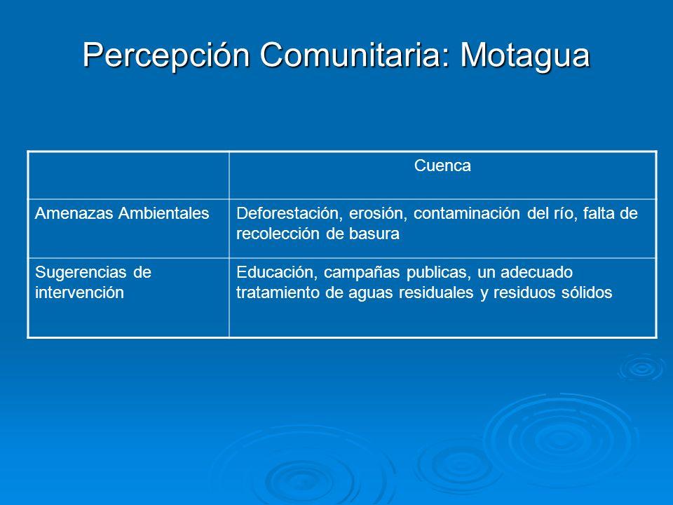 Percepción Comunitaria: Motagua Cuenca Amenazas AmbientalesDeforestación, erosión, contaminación del río, falta de recolección de basura Sugerencias d