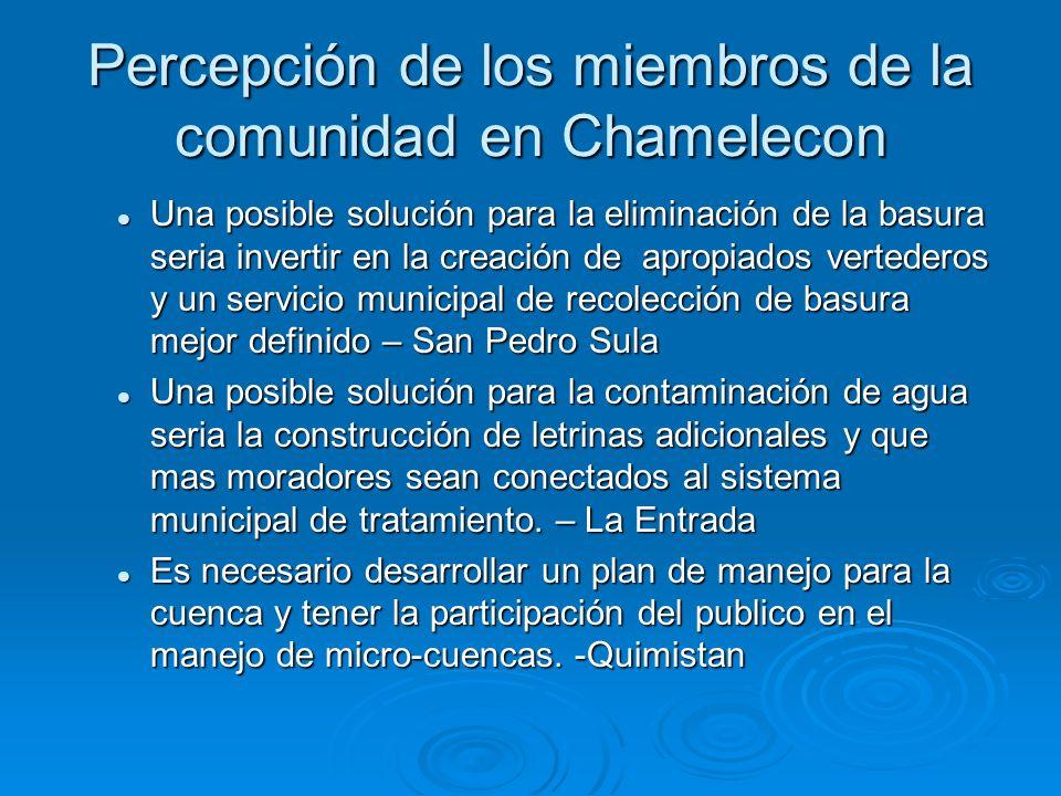 Percepción de los miembros de la comunidad en Chamelecon Una posible solución para la eliminación de la basura seria invertir en la creación de apropi
