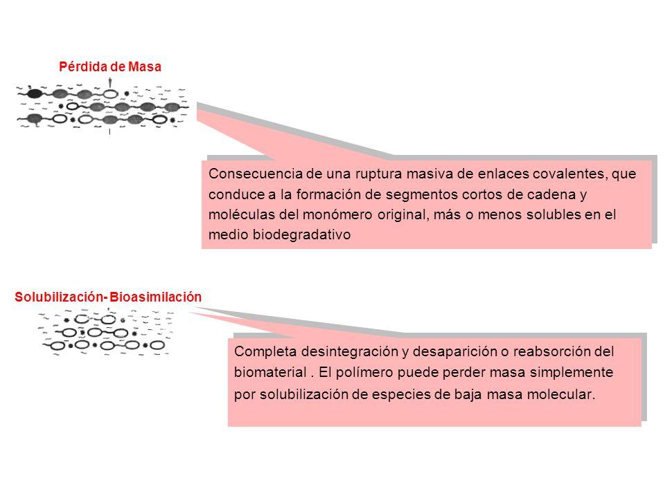 Consecuencia de una ruptura masiva de enlaces covalentes, que conduce a la formación de segmentos cortos de cadena y moléculas del monómero original,