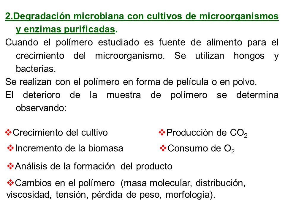 2.Degradación microbiana con cultivos de microorganismos y enzimas purificadas. Cuando el polímero estudiado es fuente de alimento para el crecimiento