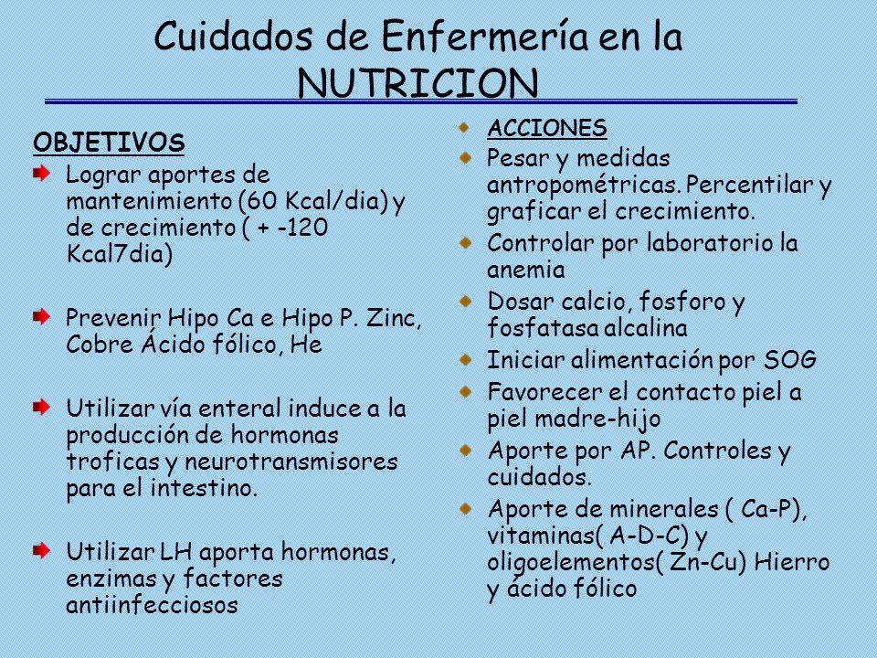 Cuidados de Enfermería en la NUTRICION OBJETIVOS Lograr aportes de mantenimiento (60 Kcal/dia) y de crecimiento ( + -120 Kcal7dia) Prevenir Hipo Ca e