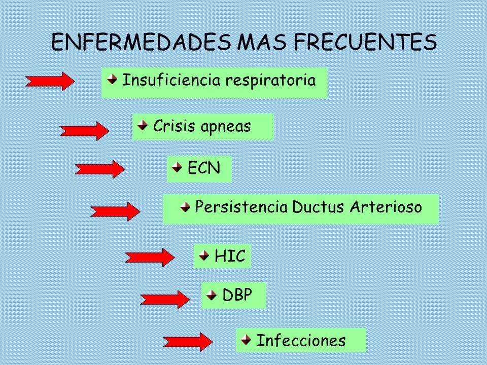 ENFERMEDADES MAS FRECUENTES Insuficiencia respiratoria ECN DBP Persistencia Ductus Arterioso Crisis apneas Infecciones HIC