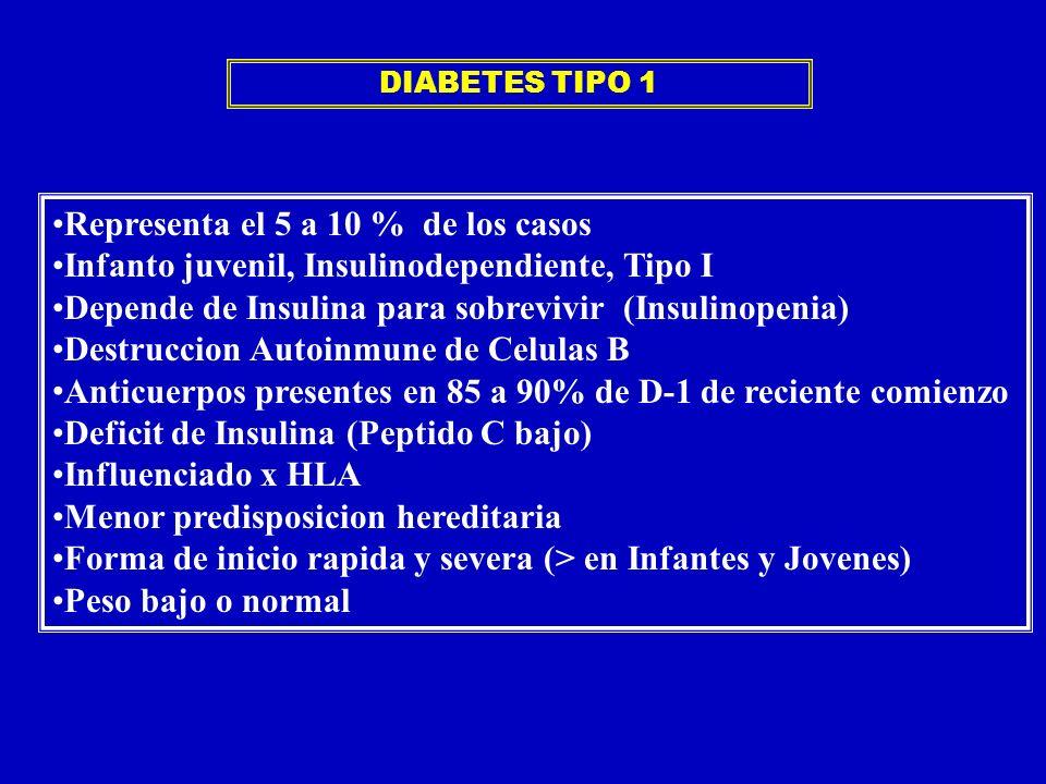 Representa el 5 a 10 % de los casos Infanto juvenil, Insulinodependiente, Tipo I Depende de Insulina para sobrevivir (Insulinopenia) Destruccion Autoi