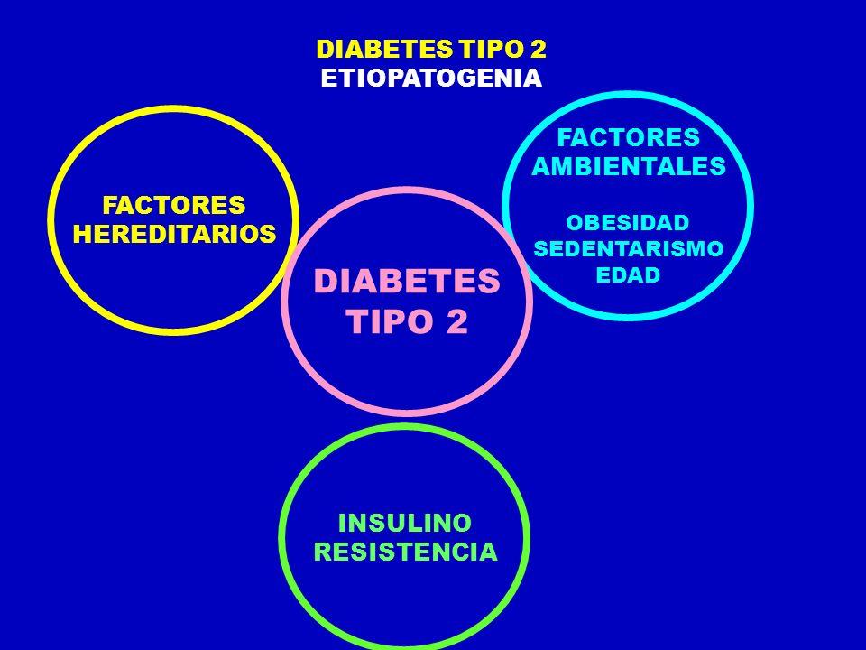 ETIOPATOGENIA FACTORES HEREDITARIOS INSULINO RESISTENCIA FACTORES AMBIENTALES OBESIDAD SEDENTARISMO EDAD DIABETES TIPO 2