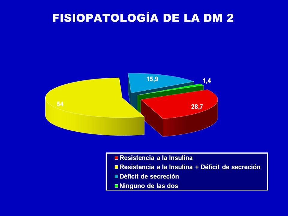 FISIOPATOLOGÍA DE LA DM 2