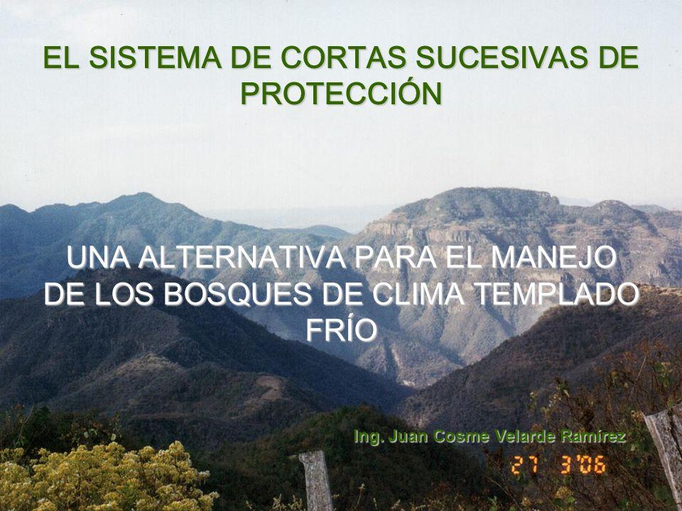 EL SISTEMA DE CORTAS SUCESIVAS DE PROTECCIÓN UNA ALTERNATIVA PARA EL MANEJO DE LOS BOSQUES DE CLIMA TEMPLADO FRÍO Ing.