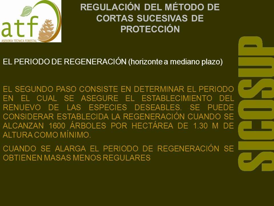 REGULACIÓN DEL MÉTODO DE CORTAS SUCESIVAS DE PROTECCIÓN EL PERIODO DE REGENERACIÓN (horizonte a mediano plazo) EL SEGUNDO PASO CONSISTE EN DETERMINAR EL PERIODO EN EL CUAL SE ASEGURE EL ESTABLECIMIENTO DEL RENUEVO DE LAS ESPECIES DESEABLES.
