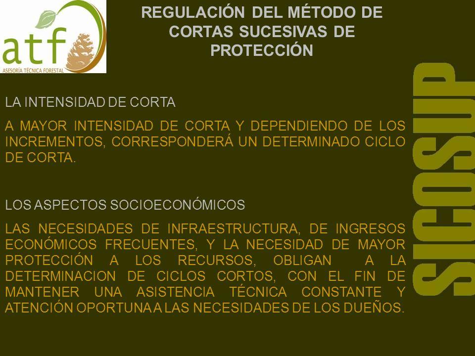 REGULACIÓN DEL MÉTODO DE CORTAS SUCESIVAS DE PROTECCIÓN LA INTENSIDAD DE CORTA A MAYOR INTENSIDAD DE CORTA Y DEPENDIENDO DE LOS INCREMENTOS, CORRESPONDERÁ UN DETERMINADO CICLO DE CORTA.