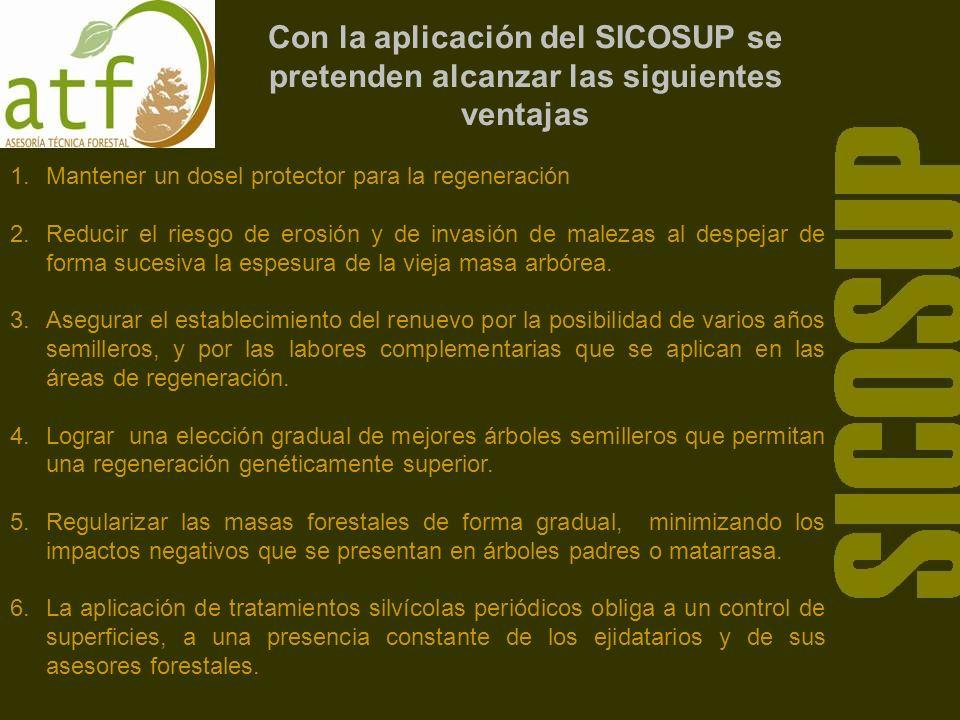 Con la aplicación del SICOSUP se pretenden alcanzar las siguientes ventajas 1.Mantener un dosel protector para la regeneración 2.Reducir el riesgo de erosión y de invasión de malezas al despejar de forma sucesiva la espesura de la vieja masa arbórea.