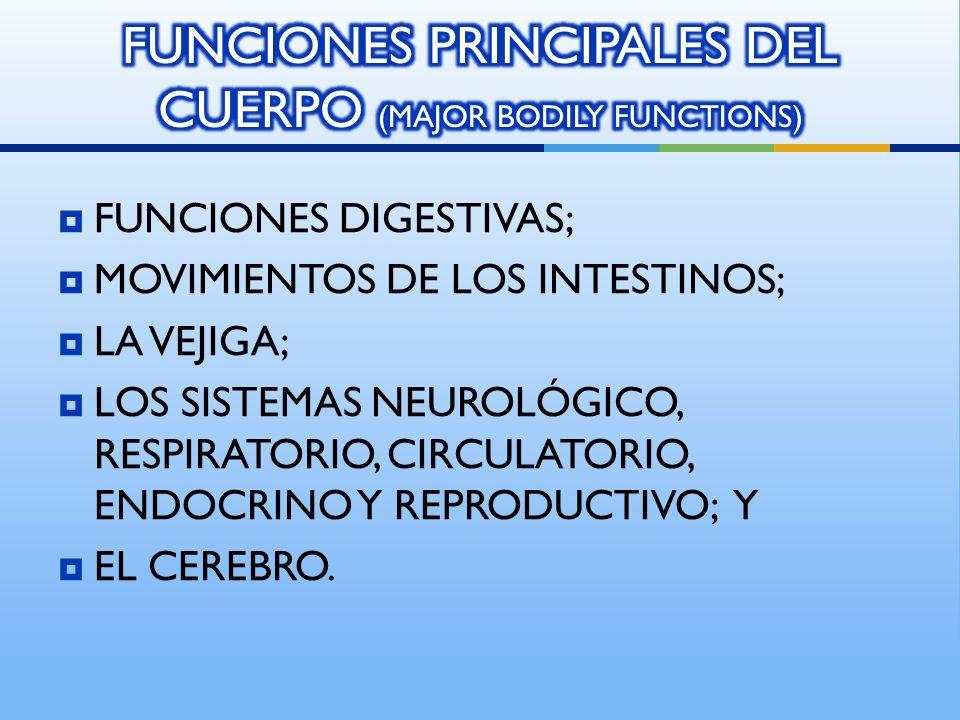 FUNCIONES DIGESTIVAS; MOVIMIENTOS DE LOS INTESTINOS; LA VEJIGA; LOS SISTEMAS NEUROLÓGICO, RESPIRATORIO, CIRCULATORIO, ENDOCRINO Y REPRODUCTIVO; Y EL CEREBRO.