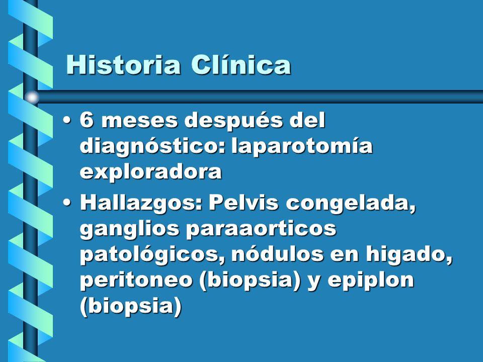 Historia Clínica 6 meses después del diagnóstico: laparotomía exploradora6 meses después del diagnóstico: laparotomía exploradora Hallazgos: Pelvis co