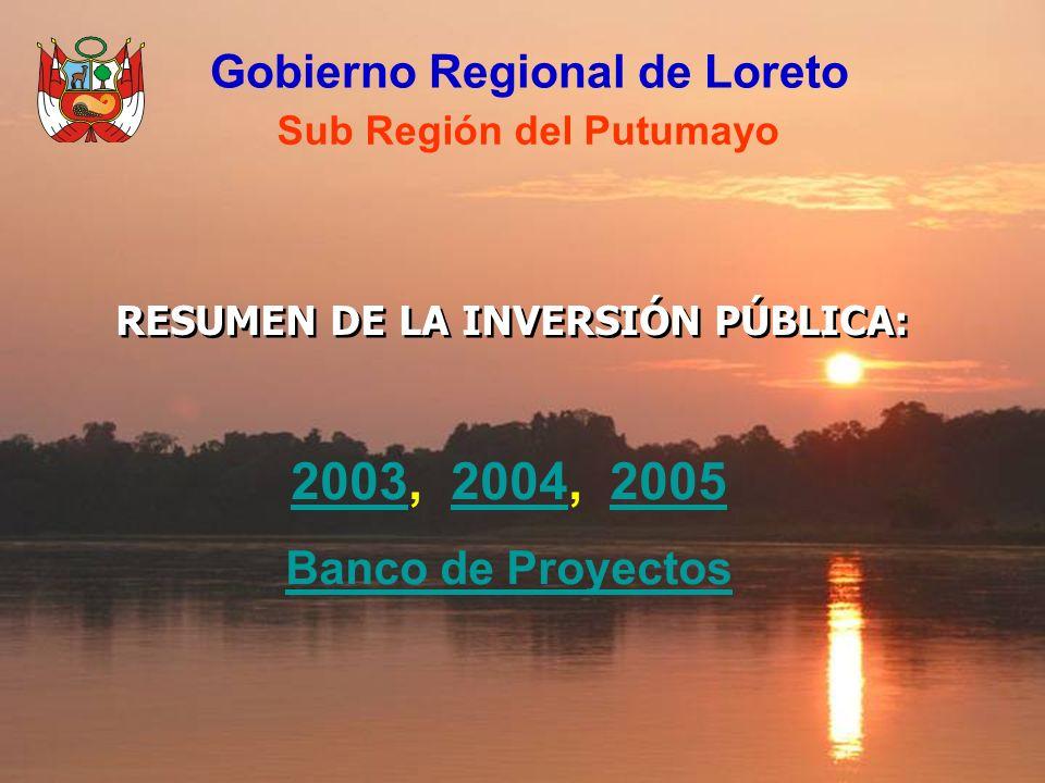 Gobierno Regional de Loreto Sub Región del Putumayo RESUMEN DE LA INVERSIÓN PÚBLICA: 20032003, 2004, 200520042005 Banco de Proyectos