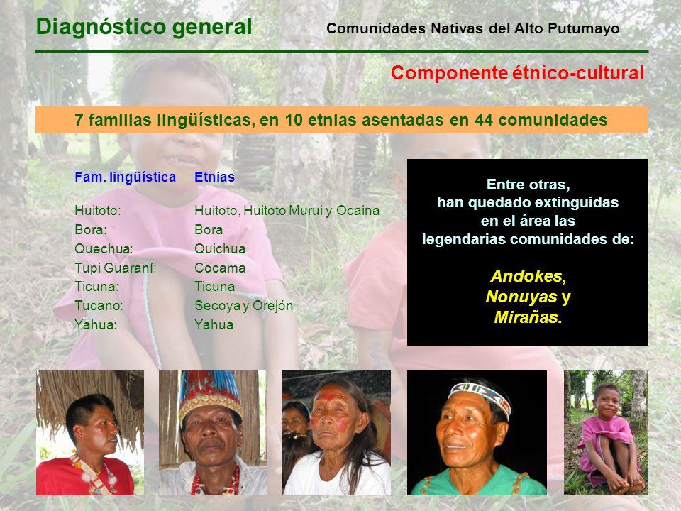 Diagnóstico general Componente étnico-cultural 7 familias lingüísticas, en 10 etnias asentadas en 44 comunidades Fam. lingüísticaEtnias Huitoto:Huitot