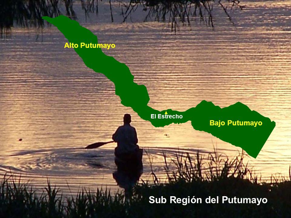 PERÚ Loreto Maynas Colombia Ecuador Brasil Putumayo Sub Región del Putumayo Ubicación geográfica Km 2 % Perú1 285 216 Loreto368 85228.7 Maynas119 9989.3 Putumayo39 7023.1