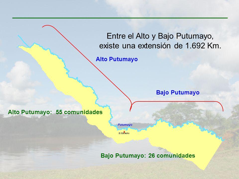 Bajo Putumayo Alto Putumayo El Estrecho Putumayo Entre el Alto y Bajo Putumayo, existe una extensión de 1.692 Km. Alto Putumayo:55 comunidades Bajo Pu